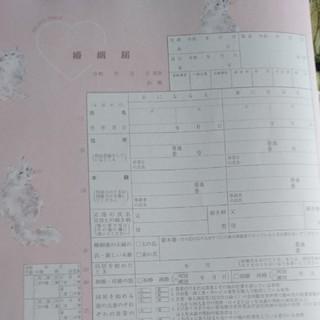 ジェラートピケ(gelato pique)のジェラートピケ 婚姻届(印刷物)