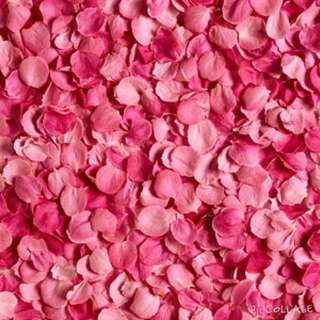 ヴィクトリアズシークレット(Victoria's Secret)のPINKヨガパン♡ヴィクシー3点おまとめ(その他)