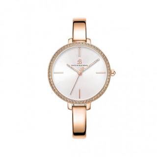 Daniel Wellington - 4b watches