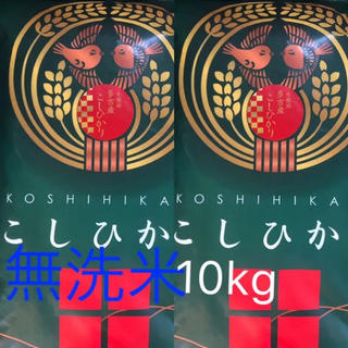 コシヒカリ 多古米 無洗米 10kg(米/穀物)