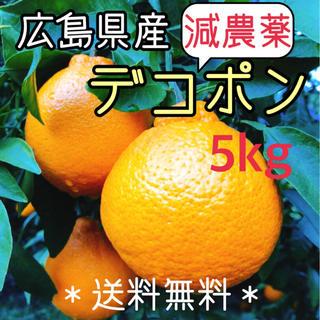 減農薬  デコポン 5キロ ノーワックス 広島県産 大崎上島 瀬戸内 数量限定(フルーツ)