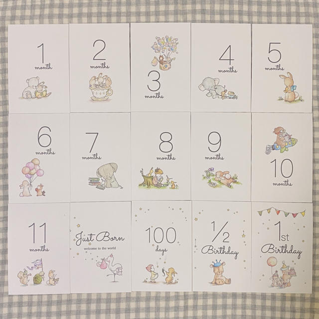 マンスリーカード 月齢カード キッズ/ベビー/マタニティのメモリアル/セレモニー用品(アルバム)の商品写真