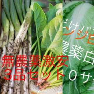激安3品無農薬野菜セット約100サイズ入るだけ送料も無料(野菜)