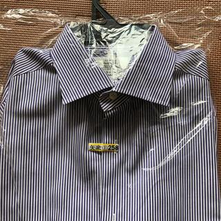 ユナイテッドアローズ(UNITED ARROWS)のワイシャツ ユナイテッドアローズ 紫のストライプ(シャツ)