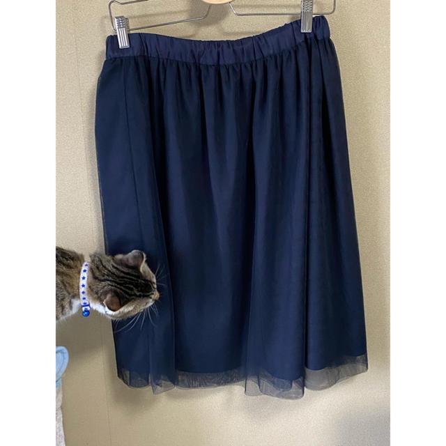 ニッセン(ニッセン)のオーガンジー風  膝丈スカート レディースのスカート(ひざ丈スカート)の商品写真