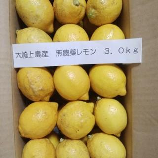 広島県大崎上島産無農薬レモン3.0kg