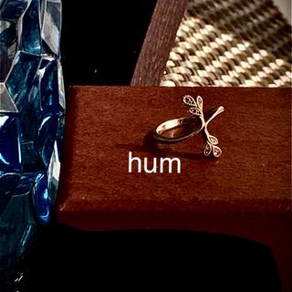 hum k18 WG 月桂樹 ブラウンダイヤ ピンキーリング #2.5(リング(指輪))