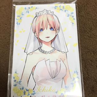 五等分の花嫁展限定!中野一花ポストカード10枚セット(カード)