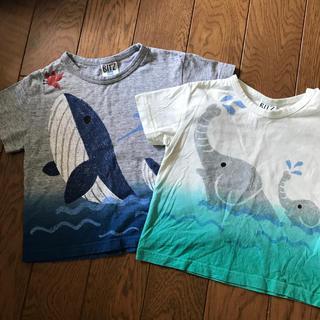 F.O.KIDS - tシャツ  95 100 おそろい エフオーキッズ