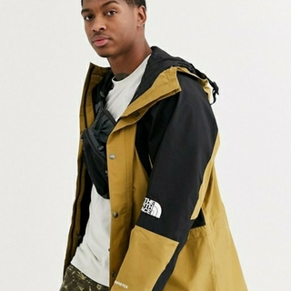 THE NORTH FACE - the north face 1994mountain light jacket