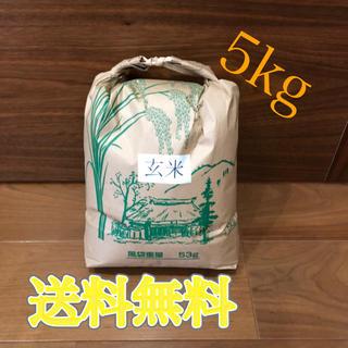 令和元年度産 新米 玄米ヒノヒカリ 5kg