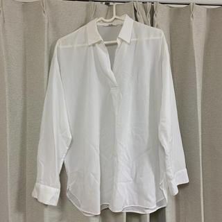 UNIQLO - 白シャツ/ユニクロ
