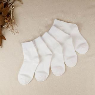 レディース サイズ22~25 白靴下 5足セット 普通丈 (ソックス)