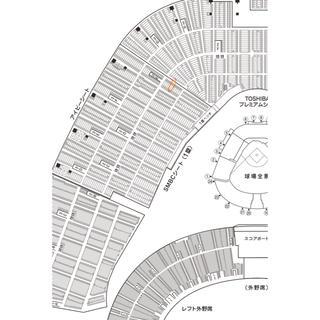 (オープン戦ペア) 阪神タイガースVS読売巨人軍 3月8日(日)