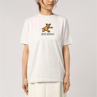 STUSSY - STUSSYベアTシャツ  bare