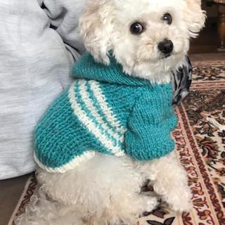 [在庫限り]わんちゃんの手編みパーカー(ブルー)(犬)