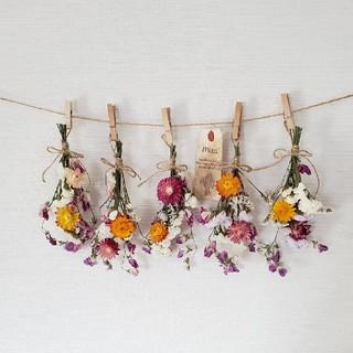 ボリューム貝細工と小花の彩りスワッグドライフラワーガーランド/ かすみ草(ドライフラワー)