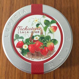 ルピシア(LUPICIA)のLUPICIA ルピシア とちおとめ 苺の紅茶 50g(茶)