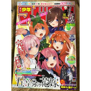 コウダンシャ(講談社)の週刊少年マガジン 12号(漫画雑誌)