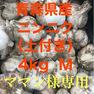 青森県五戸町産 にんにく(土付き)M 4㎏(野菜)