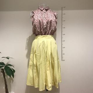 ショコラフィネローブ(chocol raffine robe)のフレアスカート(ひざ丈スカート)