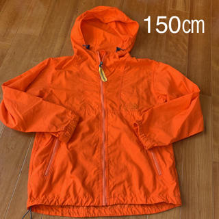 THE NORTH FACE - THE NORTH FACE  ウインドブレーカー 150㎝