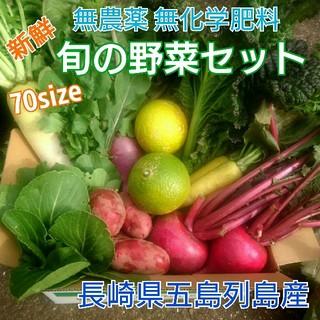 無農薬新鮮野菜セット(70サイズ) 〈ラインナップご確認をください〉 五島列島産(野菜)