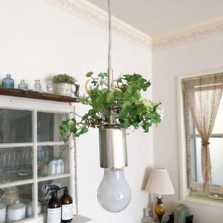 フランフラン(Francfranc)のFrancfranc ペンダントライト ペンダントランプ 灯り 照明 ライト(天井照明)