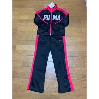 PUMA - 新品 ジャージ上下 プーマ セットアップ キッズ ガールズ ボーイズ 黒