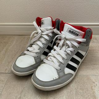 アディダス(adidas)の新品同様 adidas ハイカットスニーカー (その他)