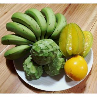 沖縄本島産 冬のフルーツセット♪(フルーツ)