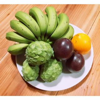 沖縄本島産 原色の冬のフルーツセット♪(フルーツ)