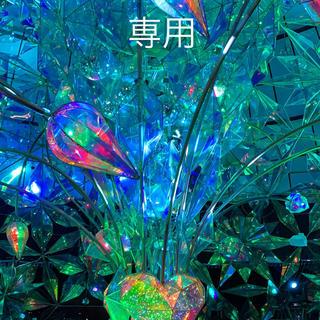 マルコ(MARUKO)のLee様専用(洗剤/柔軟剤)