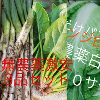 激安3品無農薬野菜セット約100サイズ入るだけ送料も無料残りわずかと(野菜)