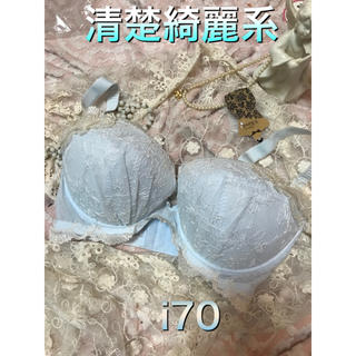 清楚綺麗系 大きいサイズフラワー刺繍オーガンジーブラi70