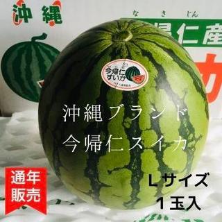 沖縄ブランド「今帰仁スイカ」 Lサイズ 1玉(フルーツ)