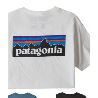 patagonia - パタゴニアT