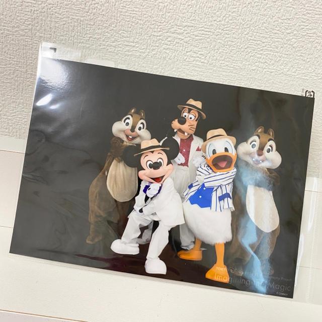 Disney(ディズニー)のディズニー 実写 フォト エンタメ/ホビーのおもちゃ/ぬいぐるみ(キャラクターグッズ)の商品写真
