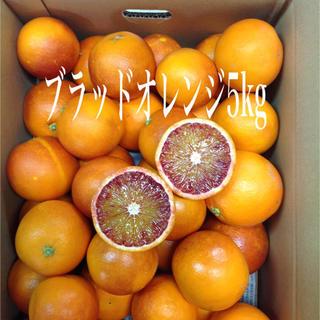ブラッドオレンジ5kg (箱込み)(フルーツ)