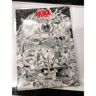 AKIRA ART OF WALLスティッカー セット(3枚入)