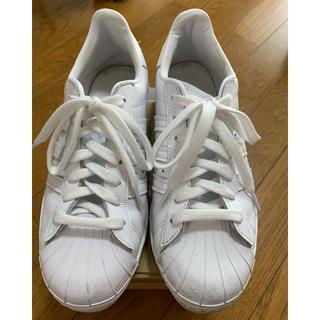 adidas - adidas スニーカー 白 23cm