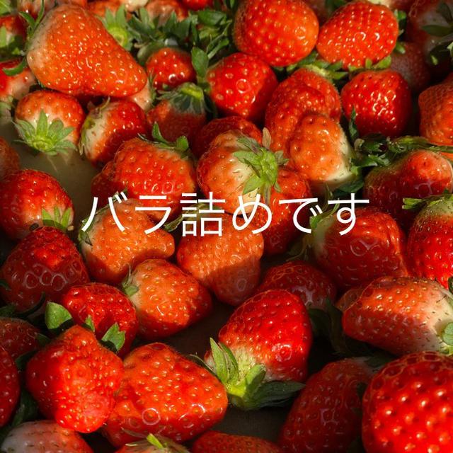 規格内、規格外●さがほのか箱込2kg●いちご苺イチゴ 食品/飲料/酒の食品(フルーツ)の商品写真