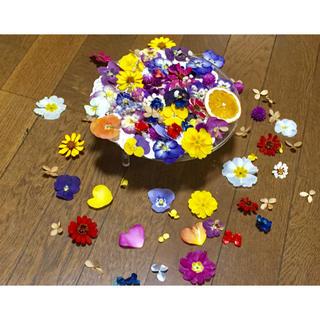 ④お花屋さんが作った11種の可愛いドライフラワーのお詰め合わせ(ドライフラワー)