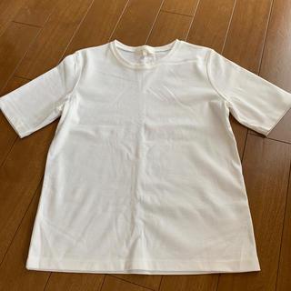 グローブ(grove)の新品未使用 grove TシャツMサイズ(Tシャツ/カットソー(半袖/袖なし))