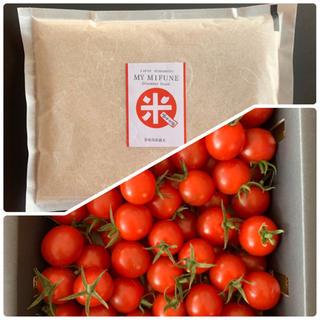 熊本県 希少自然栽培米 1kg  高級ミニトマト500g セット(野菜)