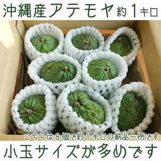 【送料込】沖縄産アテモヤ約1キロ|規格外/大きさ不揃い┃シャカトウよりも甘味濃厚(フルーツ)