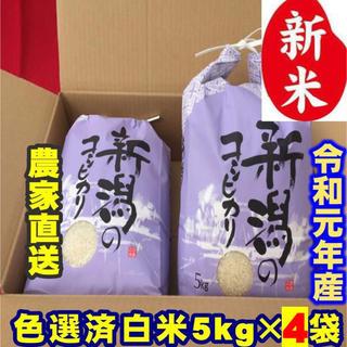 新米・令和元年産新潟コシヒカリ 白米5kg×4個★農家直送★色彩選別済22