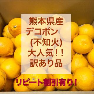 熊本県産 デコポン 20k(フルーツ)