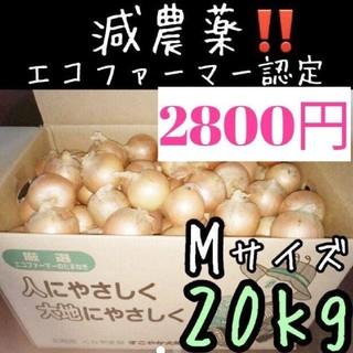 残りわずか 北海道産 減農薬 玉ねぎ Mサイズ 20キロ(野菜)