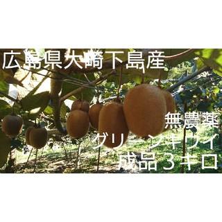 無農薬グリーンキウイ 成品3キロ(フルーツ)